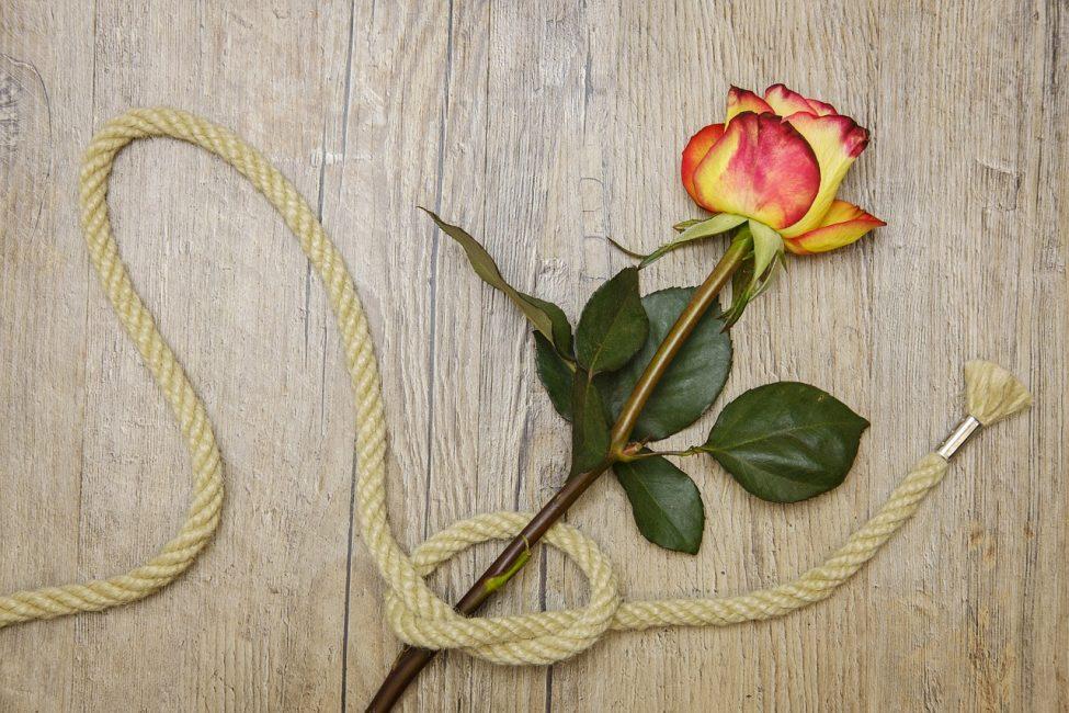 Heart-Felt Connections