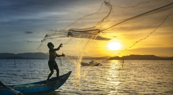 Casting Our Nets Wider